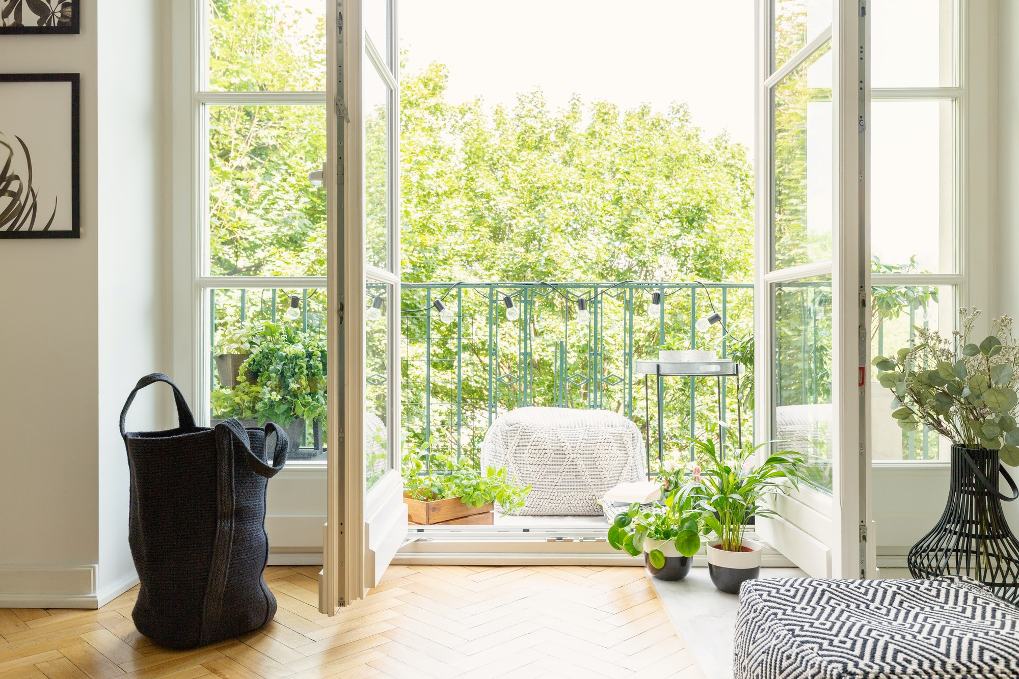 Lot of green plants and open balcony door in modern apartment, r